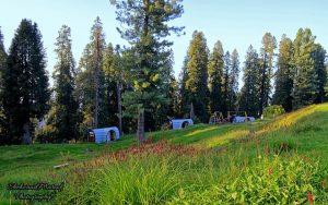 Thandiani-Camping-Pods-Galiyat