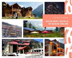 Hotels in Naran-Naran Kaghan Hotels