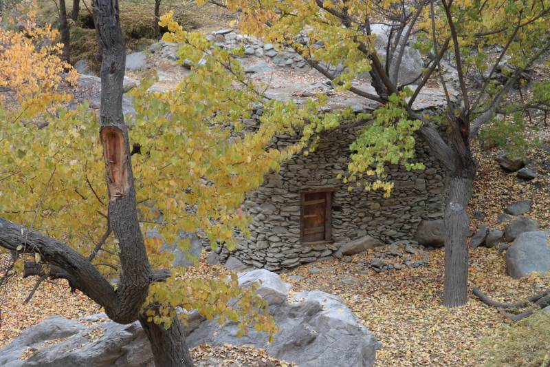 Autumn Hunza Tours
