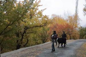 Autumn Tours Pakistan