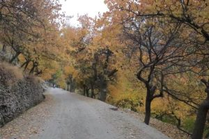Autumn in Gilgit Baltistan