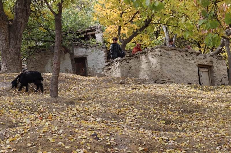 Autumn in Hunza Pakistan