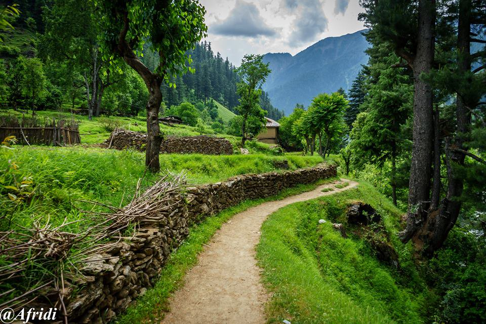 Dawarian Neelum Valley