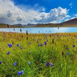 Deosai-Plains-The-Land-Of-Giants