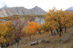 Gilgit Baltistan in Autumn