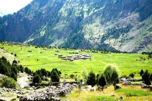 Rupal-Valley-Astore-Gilgit-Baltistan