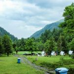 Sharan forest Kaghan valley